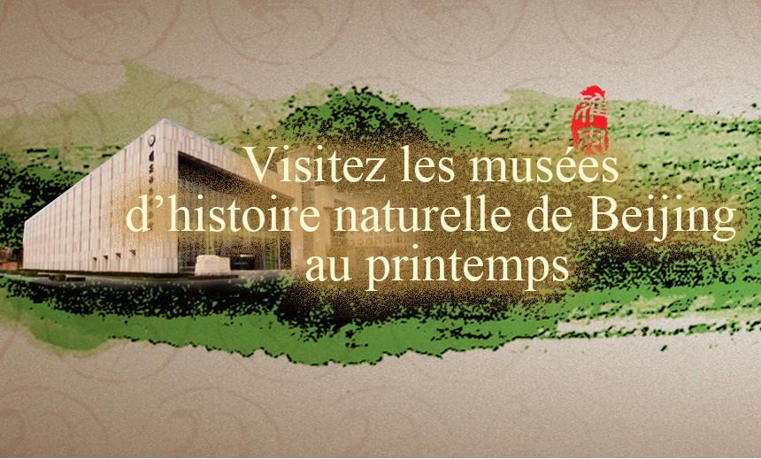 Visitez les musées d'histoire naturelle de Beijing au printemps