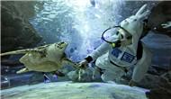 Gongti Richina Underwater World (Zoo Azul de Beijing)