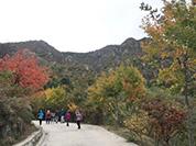 2017大美西山重阳文化徒步活动