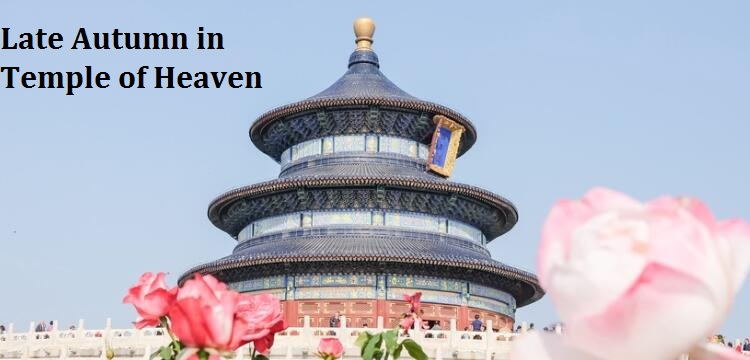 Late Autumn in Temple of Heaven