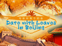 Date with Leaves in Beijing