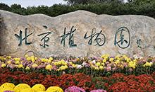 北京这个赏花胜地美翻了