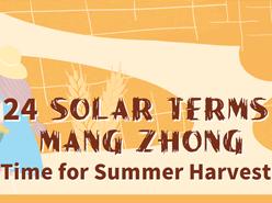24 Solar Terms - Mang Zhong